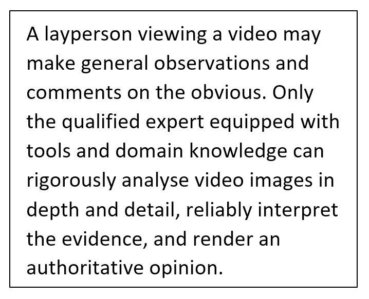 layperson vs expert